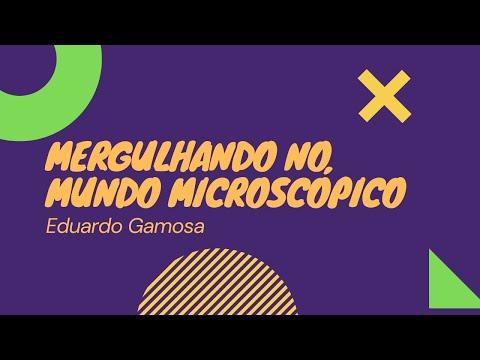 Mergulhando no Mundo Microscópico