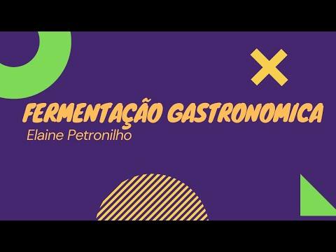 Fermentação Gastronômica